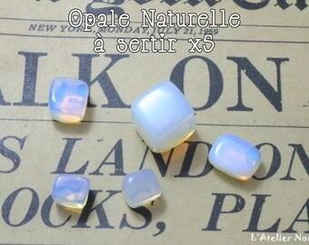 Set of 5 pieces natural crimp Opal cubic