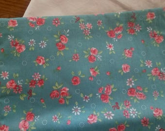 Floral fabric / blue and pink slip