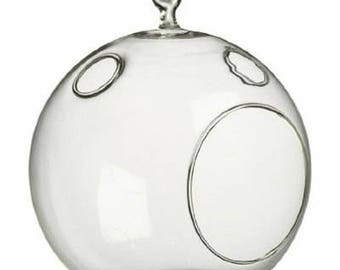 """Round 5"""" Glass Terrarium with Minor Imperfections / Closeout Price Glass"""