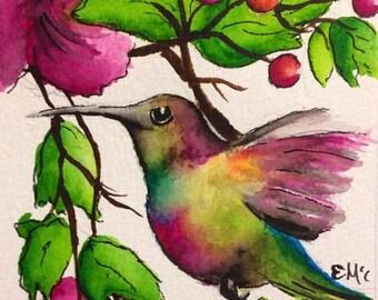 Original Watercolour Humming Bird Painting
