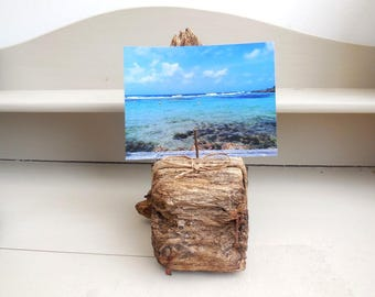 Picture holder Driftwood with rusty spikes, sleek