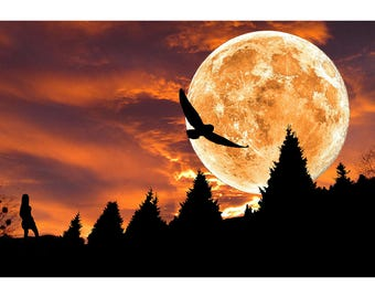 Owl Observed By A Full Moon - Fantasy Print - Fantasy Art - Fantasy Poster - Fantasy Artwork