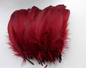 set of 5 red bordeaux feathers 15-20cm