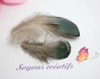 10 feathers natural multicolor - SC0081805 - creating jewelry-
