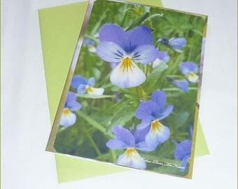 Carte double Parterre de pensées faite main de Céline Photos Art Nature