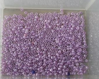 Purple 9g of seed beads