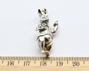 2 Stand up 3D Rabbit Charms - EF00004