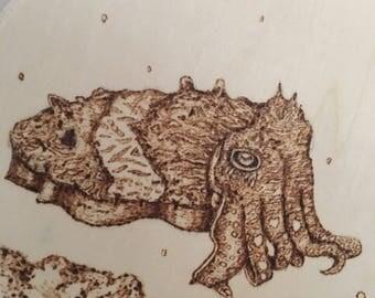 Cuttlefish round