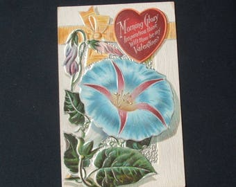 Antique Morning Glory Valentines Day Embossed Postcard.