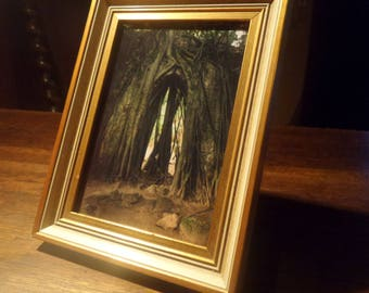 """Unique framed photo print """"The Root Chapel"""""""