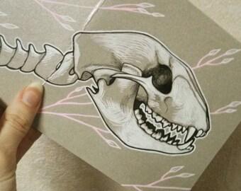 Hand drawn original raccoon skeleton postcard