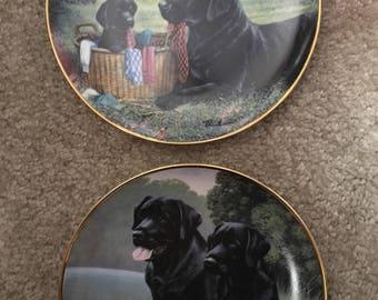 Black labrador plates