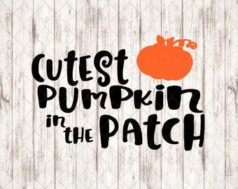 Cutest Pumpkin in the Patch SVG/Pumpkin Patch SVG/Pumpkin patch cut files/fall svg/cute pumpkin svg/pumpkin patch/pumpkin/cute fall svg
