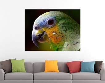 Parrot Portrait Bird Art Print Poster Canvas/Glossy HD Canvas, Gallery Wrap Or Glossy Poster