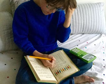 Number Stories Book Two, Curriculum Foundation Series