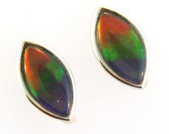 Pair of  Marquise Shaped Canadian Ammolite set in 14k White Gold