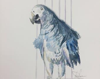 Blue Parrot Original Watercolor