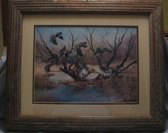 Matted and Framed Wildlife Duck Print M. Wayne Willis 1970s Approx. 20 x 24 inches Overall Ships FREE