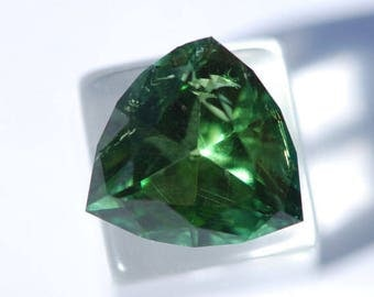 Verdelite Tourmaline with Minor Flaws -  Beautiful, Chrome Green, Faceted Triangle, 12.25 x 12.25 mm, 5.25ct, F0286