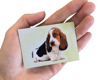Basset Dog Magnet