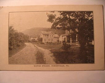 Postcard of: Water Street in Forksville PA