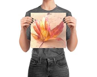 Pastel Autumn Leaf Poster