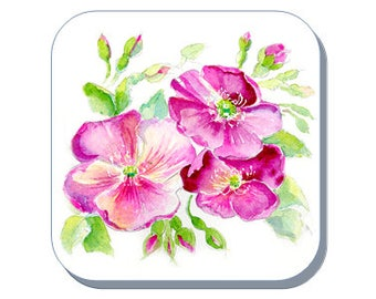 Dog Rose British Wild Flower Collection (Corked Back). From an original Sheila Gill Watercolour Painting
