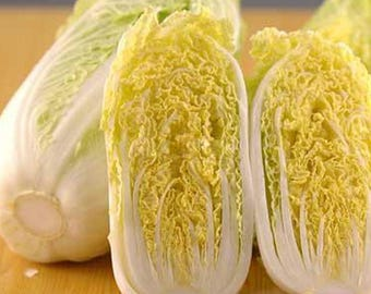 200pcs High-nutrition Baby Cabbage Seeds DIY Plant Garden Health Vegetable Seeds
