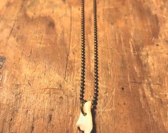 Raccoon molar necklace