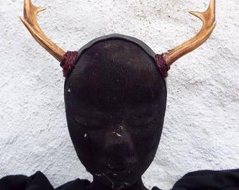 Mini deer horns