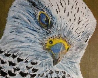 Snow Hawk, Painting, Acrylic, 8 x10