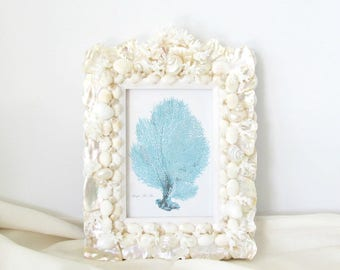 Frame Seashell Coral and Abalone, Shell Frame for Wedding Beach or Romantic Decor, Wedding Gift, Baptism Gift, First Communion Gift