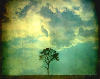 50% OFF SALE Tree and Sky Photo, Surreal, Abstract Art, Clouds, Blue, Yellow, Black, 5x5 inch Fine Art Photograph, Premonition