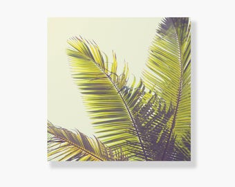Palm tree photo canvas, coastal decor, tropical decor, green, beach wall art, coastal wall art, palm tree wall art, canvas art - Tropicana