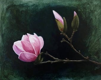 Original Oil Painting - Magnolia Blossoms - Tulip Tree - Flowering Tree  - Pink Blue Green Yellow - 8x10