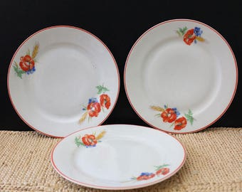 Poppies. Altrohlau luncheon plates, 1930s Czechoslovakia porcelain dishes.
