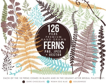 Ferns clipart hand drawn fern clip art botanical clip art forest leaves wedding clip art nature woodland instant download DIY wedding