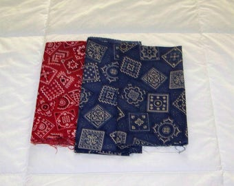 Vintage Blue and Red Material