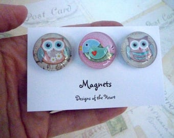 Round Glass Magnet set - Cute Owls and Birds