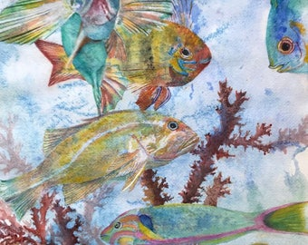 Original Watercolor by Janet Dosenberry,Brightly Colored Tropical Fish,Swimming Effortlessly Around Coral Reefs in the Ocean and Sea
