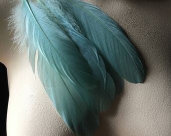 10 Aqua Feathers Goose Pallets for Bridal, Millinery, Costumes, Masks, Tribal Fusion