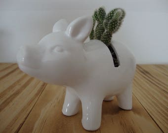 White Mickey Mouse Cactus Pig Planter - Gift, Home, Mom, Dad, Co-Worker
