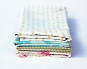 Fabric Napkins, Cloth Napkins, Reusable Napkin Set, Vintage Pale Floral, Handmade by Knotted Nest