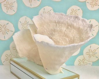 Beach Decor - Large Natural Cup Coral - Coastal Decor 35th Anniversary Gift Sea Shells Seashells