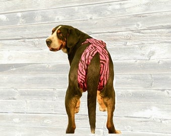 Dog diapers, dog panties, custom dog britches, bitch britches, seasonal dog panties, unique open tail design