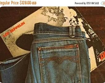 Spring SALE Vintage 70s ZEPPELIN jeans / Hippie Boho denim jeans / 1970s straight leg jeans 30 x34
