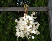Silver Dollar Plant Flower Bunch Dry Arrangement Simple Wedding Bouquet