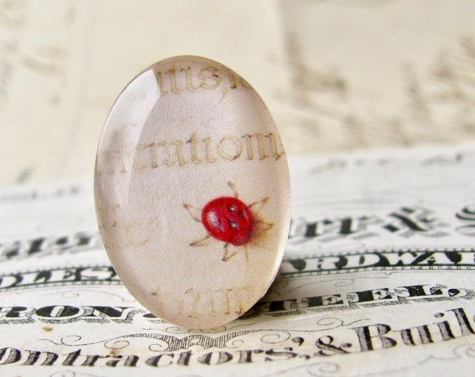 Lady bug, insect drawing, glass oval cabochon, 40x30mm or 25x18mm, handmade, Renaissance art, antique science, Vintage Botanicals series