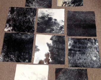 6-773.  Package of Salt and Pepper Hair on Cowhide Remnants