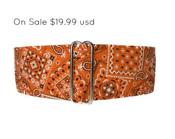 2 Inch Martingale Collar, Orange Martingale Collar, Bandana Martingale Dog Collar, Orange Bandana, Orange Dog Collar, Preppy